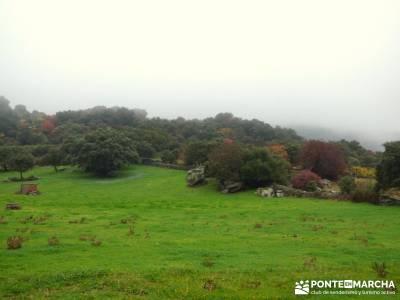 Senda Viriato; Sierra San Vicente; monasterio de paular bosques magicos fotos cascadas